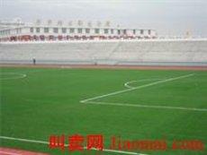 北京人造草坪批发厂家 ,草坪地毯 绿化草坪 球场草坪