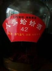 人参蛤蚧酒药酒滋补保健酒