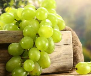 中国葡萄交易网