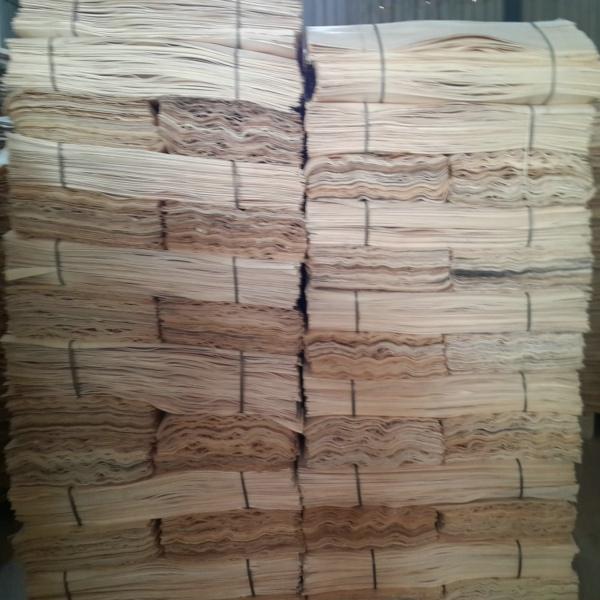 杨木皮,杨木单板,木皮