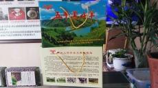 陕西甘泉 正宗黑山羊 五丰特产 无污染 无公害 纯天然有机食品 无膻味  礼盒装