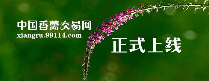 中国香薷交易网