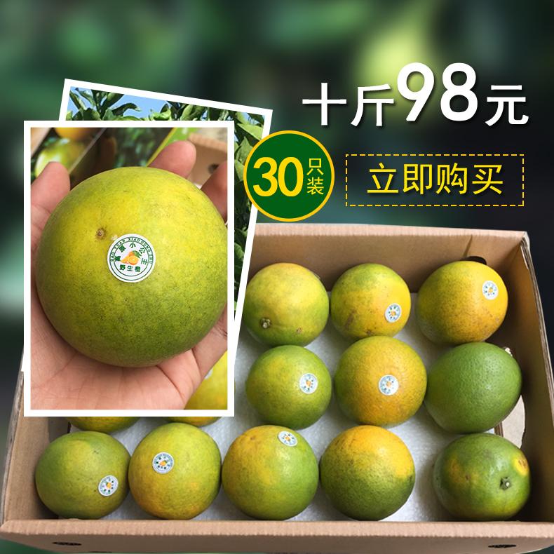 云南小公主野生橙 高原纯天然橙  新鲜时令水果榨汁甜橙 10斤装 现摘现发
