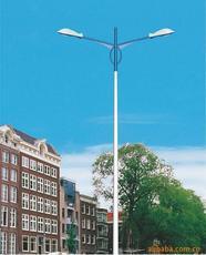 供应道路灯物美价廉道路灯道路灯加工扬州道路灯风光互补道路灯