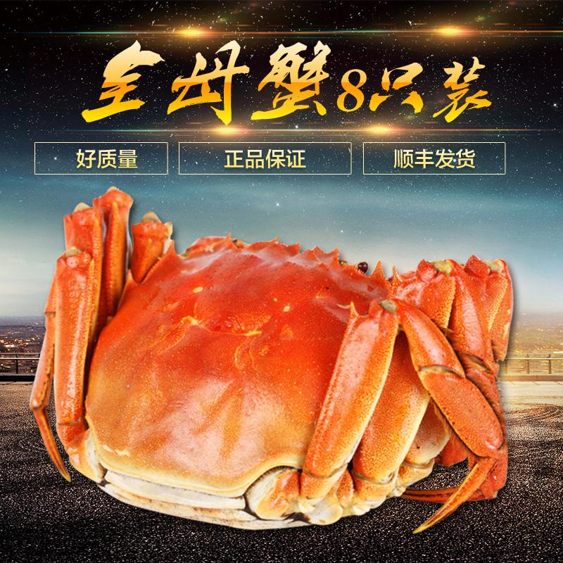 现货8只正宗鲜活阳澄湖大闸蟹公母螃蟹公3.5-3.9母2.5-2.9礼盒装