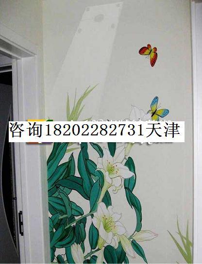 天津街头涂鸦手绘墙画彩绘墙画壁画涂鸦壁画