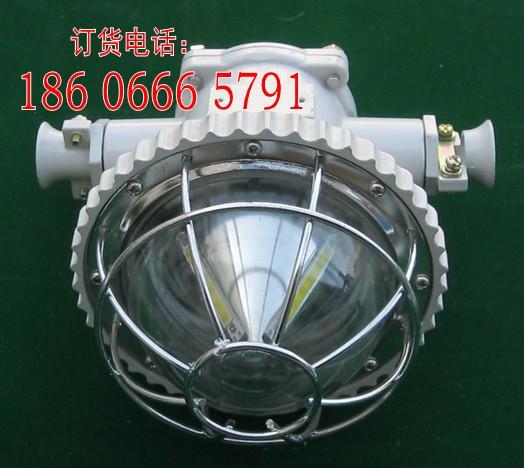 矿用隔爆型LED巷道灯DGS20/127L(A)圆形