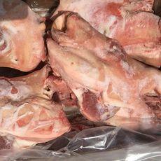 供應 進口豬頭 冷凍豬頭 智利06-06半頭 貨源充足 最新日期