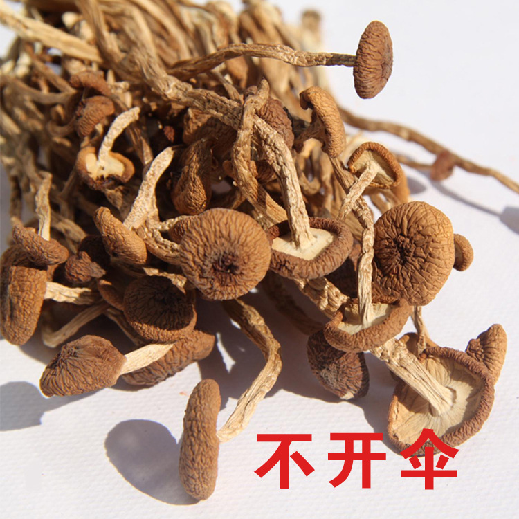 茶树菇干货古田食用菌精选散装批发不开伞特级500g