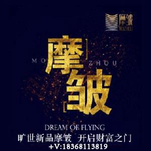 摩皱杭州地区找商加盟商,招募代理商