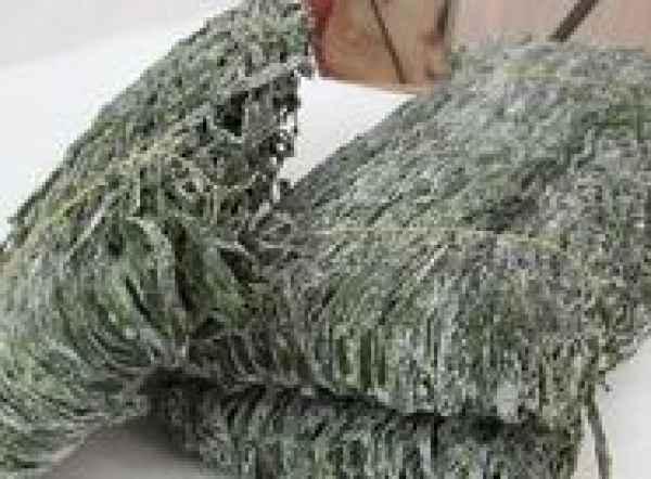 山东烘干海带丝销售价位/烘干海带丝