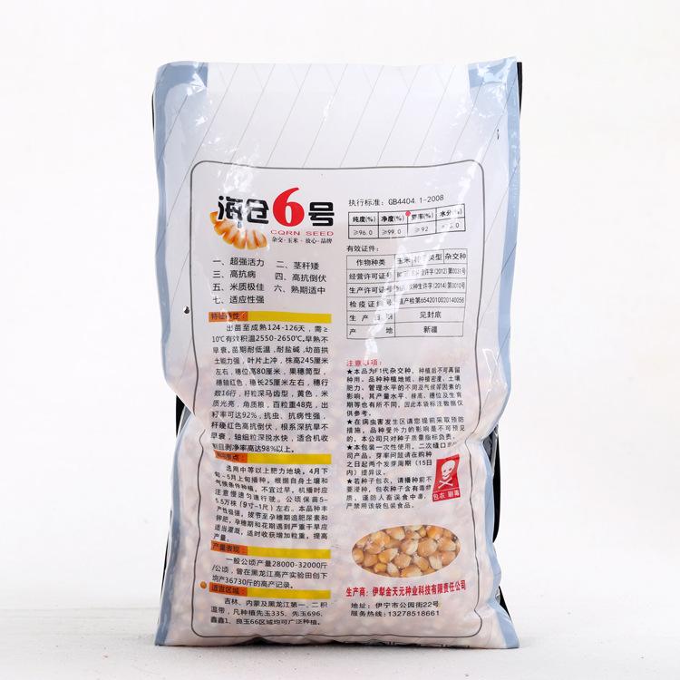 玉米籽特价海仓6号抗四杂交玉米种子高抗病茎秆矮抗倒伏适应性强