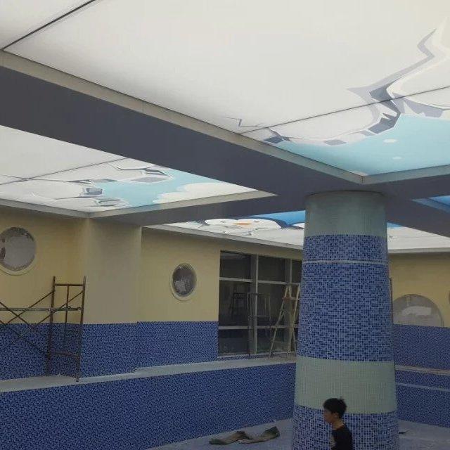 保定钢结构游泳馆软膜吊顶 承接旧馆改造工程 游泳池钢构防腐防潮吊顶材料