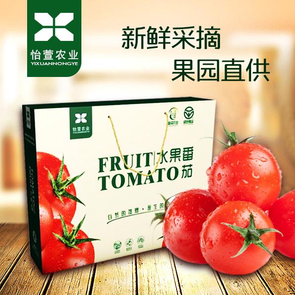 【预售】怡萱农业  普罗旺斯水果番茄  12枚精装  2500g