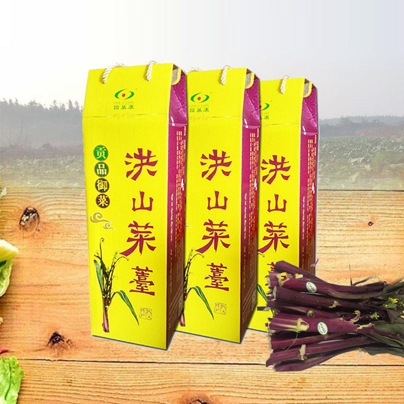 湖北洪山菜薹 新鲜红菜苔 紫菜苔 菜苔 菜薹 新鲜蔬菜