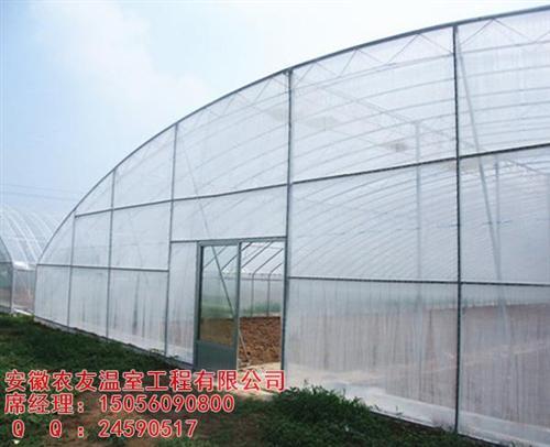 合肥大棚,安徽农友(图),农业大棚建造