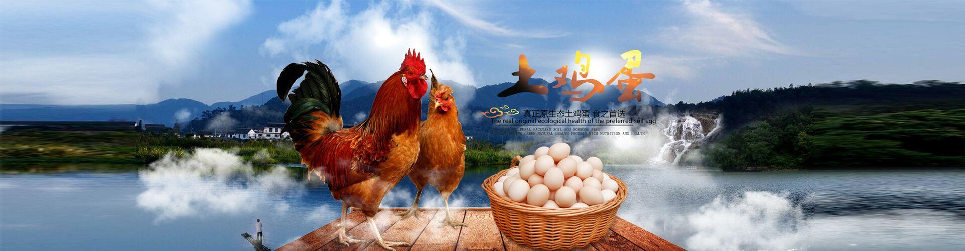 土鸡蛋22