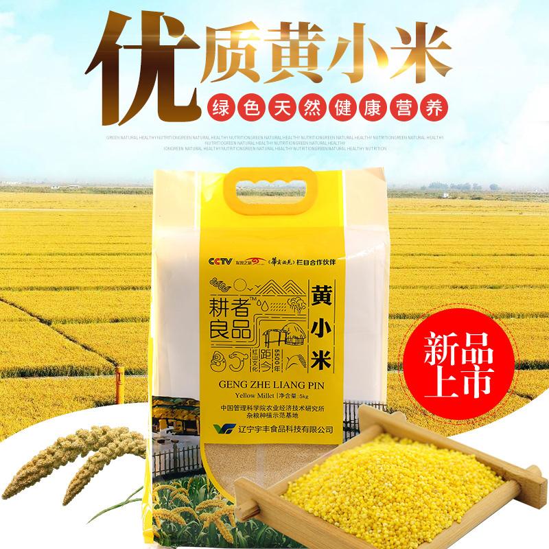 供应 2017东北朝阳新米 黄小米 农家粗粮杂粮小米粥超值10斤装
