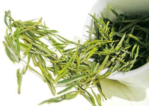 茶叶经济年会活动在贵州召开