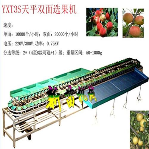 新苗牌YXT3S天平双面选果机上果机果蔬分选机