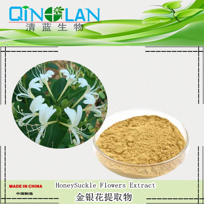 金银花提取物 10:1  绿原酸  金银花浓缩粉 金银花粉 清热解毒