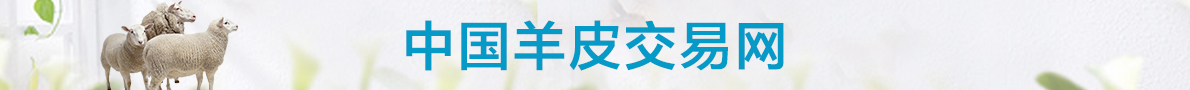 中国羊皮交易网