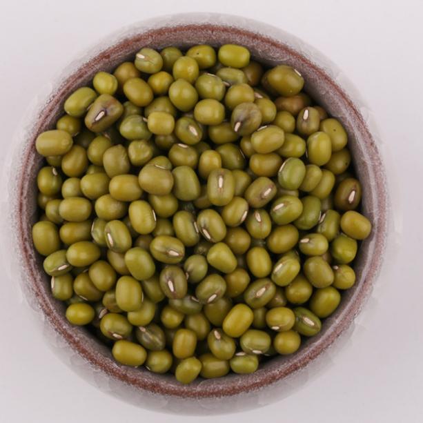 供应大量绿豆