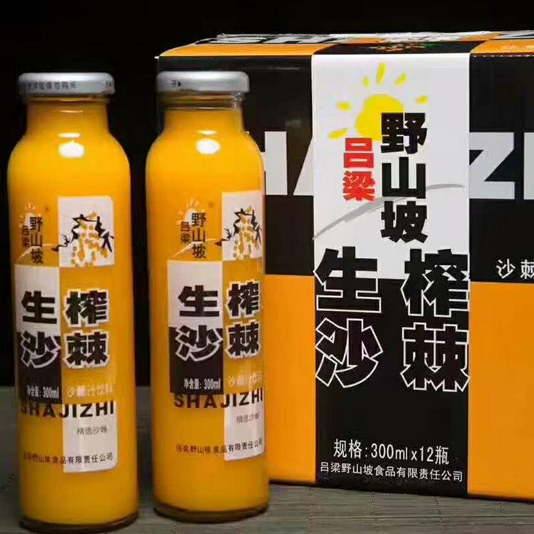沙棘汁饮料12瓶300毫升 好喝助消化的沙棘饮料批发