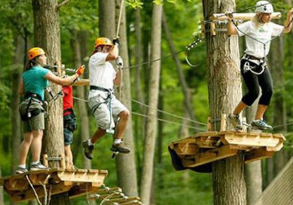 历奇探险-丛林飞越 树上拓展 树上训练 丛林穿越图片