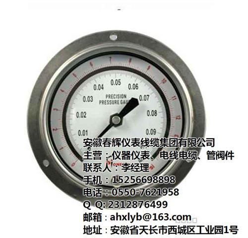 一般压力表型号_一般压力表_安徽春辉集团(在线咨询)