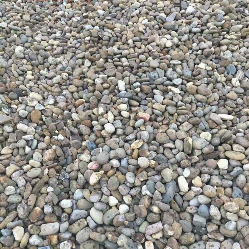 广东鹅卵石批发 鹅卵石价格 鹅卵石产地