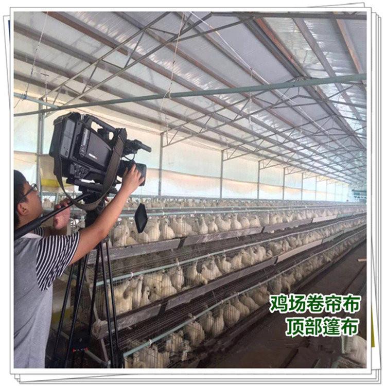 共享畜牧豬場卷簾布圖片 牛場擋風篷布價格 防雨帆布批發 養豬欄卷簾布尺寸訂做