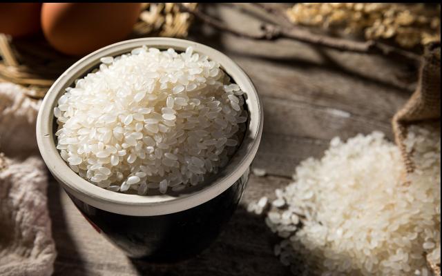 在哈尔滨百位专家共同品鉴上百种国内外大米盛宴