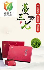中国田七产业带