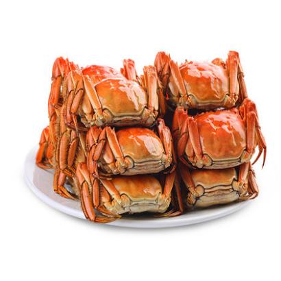 供应 金蟹阁阳澄湖大闸蟹2对(公3.0两,母2.0两)4只礼盒装鲜活螃蟹