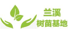浙江兰溪树苗基地