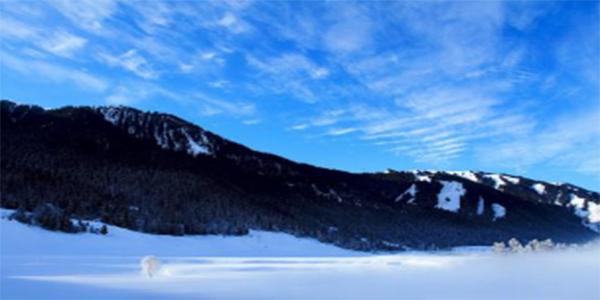 轴承动态:新疆地区大面积实施新供暖方法,让百姓过上一个暖冬!