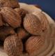砂仁 产地直销 优质砂仁散装批发中药材供应新货