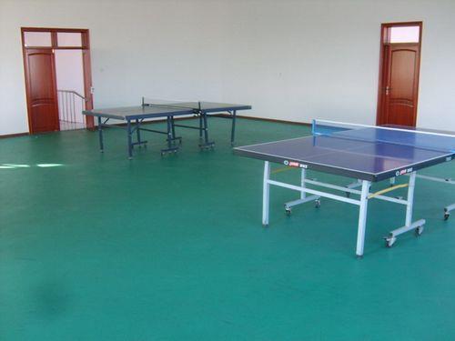 常德金成體育公司、常德專業PVC球場施工、PVC球場
