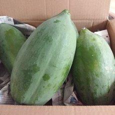 供应 云南红心木瓜5斤新鲜水果冰糖心