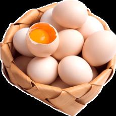 生態土雞蛋農家散養新鮮草雞蛋柴雞蛋6枚