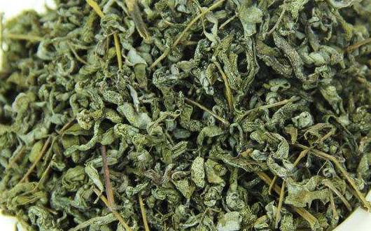 错误的藤茶冲泡和饮用方式可能导致藤茶无法发挥其益处!